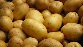 Skott för potatishögflyttning stock video