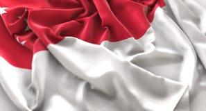 Skott för Singapore flagga rufsat Beautifully vinkande makronärbild Arkivfoton