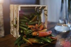 Skottet av en korg fyllde med varma peppar i olika variationer Arkivfoto