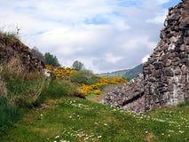 Skottet landskap Fotografering för Bildbyråer
