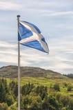 Skottland avgör Fotografering för Bildbyråer