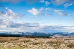 Skottland beskådade från Carter Bar fotografering för bildbyråer