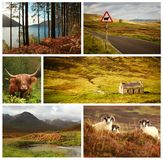 Skottland collage Arkivbilder