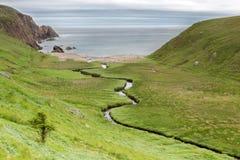 Skottland gräsplaner Arkivbilder