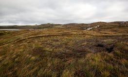 Skottland hed arkivfoto