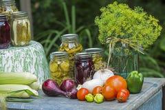 Skottpengar av sommargrönsaker från trädgården royaltyfri fotografi