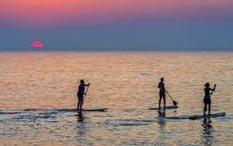 Skovelboarders på soluppgång Arkivbilder