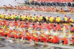 Skovelfartyglopp Royaltyfri Bild
