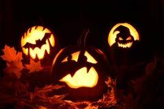 Skrämd pumpa halloween Royaltyfria Foton