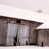 Skröplig träladugård som täckas med snö på kall New England vinterdag Royaltyfria Bilder