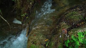 Skradinski Buk, waterfall in national park Krka stock footage