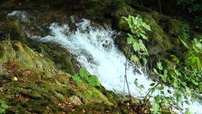 Skradinski Buk, waterfall in national park Krka. Beautiful landscape in Krka national park. Europe stock video