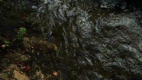 Skradinski Buk, waterfall in national park Krka. Beautiful landscape in Krka national park. Europe stock video footage