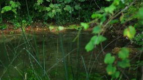 Skradinski Buk, waterval in nationaal park Krka mug stock videobeelden