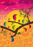 skraj fåglar Arkivbild