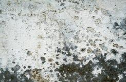 skrapad vägg Royaltyfria Bilder