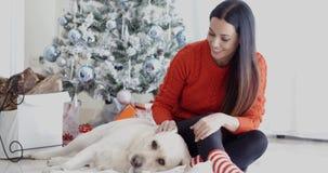 Skratta den unga kvinnan med hennes hund på jul stock video