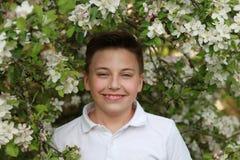 Skratta pojken med blomningar av ett äppleträd Royaltyfri Fotografi