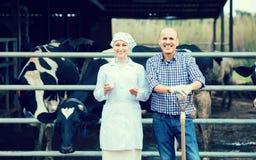 Skratta veterinären som pratar med bonden Arkivfoto