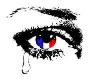 Skriande öga med flaggan av Frankrike Royaltyfri Foto