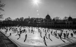 Skridskoåkningisbana mycket av folk på jul i Budapest arkivbild