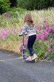skridsko för landsvägsparkcykel Royaltyfria Bilder