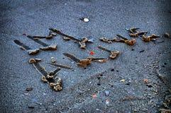 Skriftligt i sanden… är jag vid liv…, Royaltyfria Foton