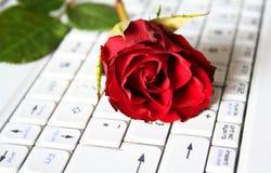 skriv in förälskelsepressen Royaltyfri Fotografi