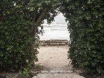 Skriv in till havssidan till och med den gröna buskeväggen royaltyfri bild