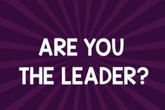 Skriva anmärkningsvisning var dig Leaderquestionen Affärsfoto som ställer ut ledarskap som visar ta omsorg av företagshalvan royaltyfri illustrationer