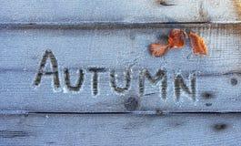 Skriva på snön Trä texturera Arkivfoto