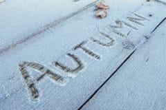Skriva på snön Trä texturera Arkivfoton