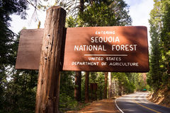 Skrivande in sequoiamedborgare Forest Road Sign California Parks Royaltyfria Bilder