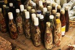 Skärm av flaskor med i den lilla byn, Samana halvö, Dominikanska republiken Royaltyfri Fotografi