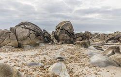 Skroniowy na plaży Obraz Royalty Free