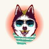 Skrovligt i solglasögon Modedjurillustration Arkivbild