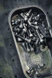 Skruvar och bultar i ett magnetiskt stålmagasin för hantverkare Royaltyfri Fotografi