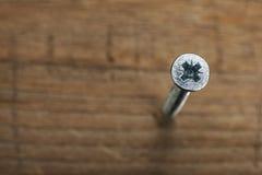 Skruven skruvade in i träplanka Fotografering för Bildbyråer
