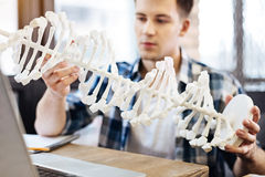 Skrzętny studencki holdign DNA model Obraz Stock