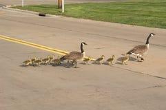 skrzyżowanie ulic Zdjęcia Royalty Free