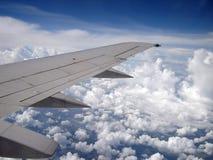 skrzydła. Zdjęcia Stock