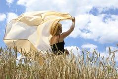 skrzydła wolności Zdjęcia Royalty Free