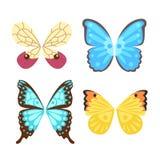 Skrzydła zwierzęcia piórka pinion wolności motyl odizolowywający lot i naturalny jastrzębia życia pokój projektujemy latającego e Fotografia Royalty Free