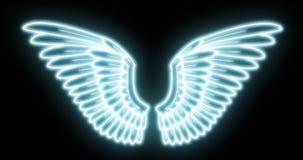 skrzydła Obrazy Royalty Free