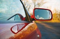 Skrzydłowy lustro Zdjęcie Stock