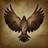 Skrzydła wolność Zdjęcie Royalty Free