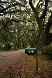 Skrzynka pocztowa w Charleston& x27; s jesieni sezon Obrazy Stock