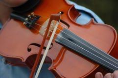 skrzypaczka Zdjęcie Stock