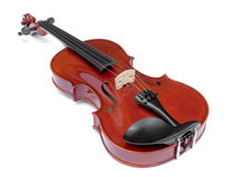 skrzypce zdjęcia royalty free