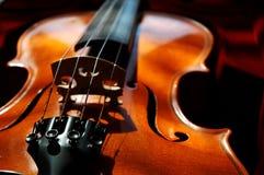 skrzypce. obraz royalty free